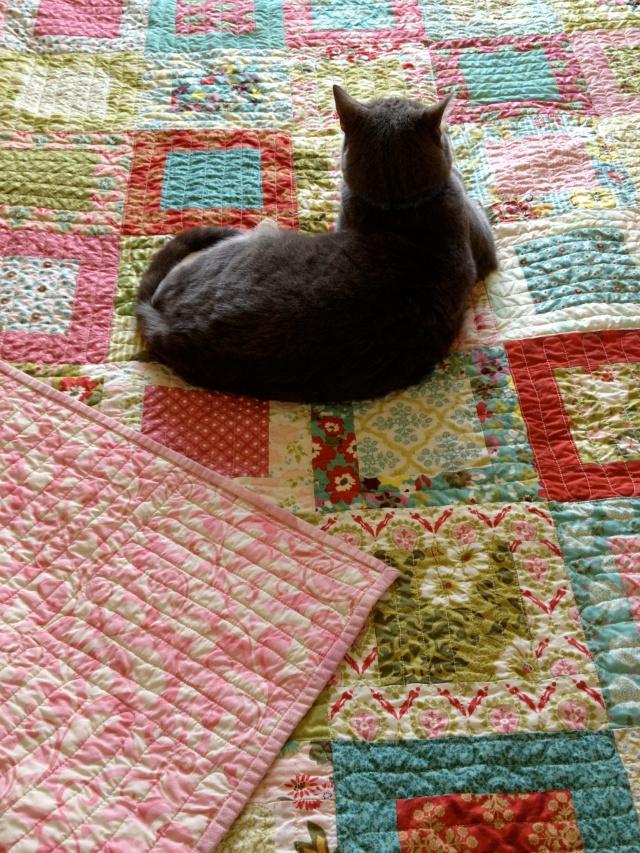 Moda fabric, layer cake, Ann Ferguson Quilts,