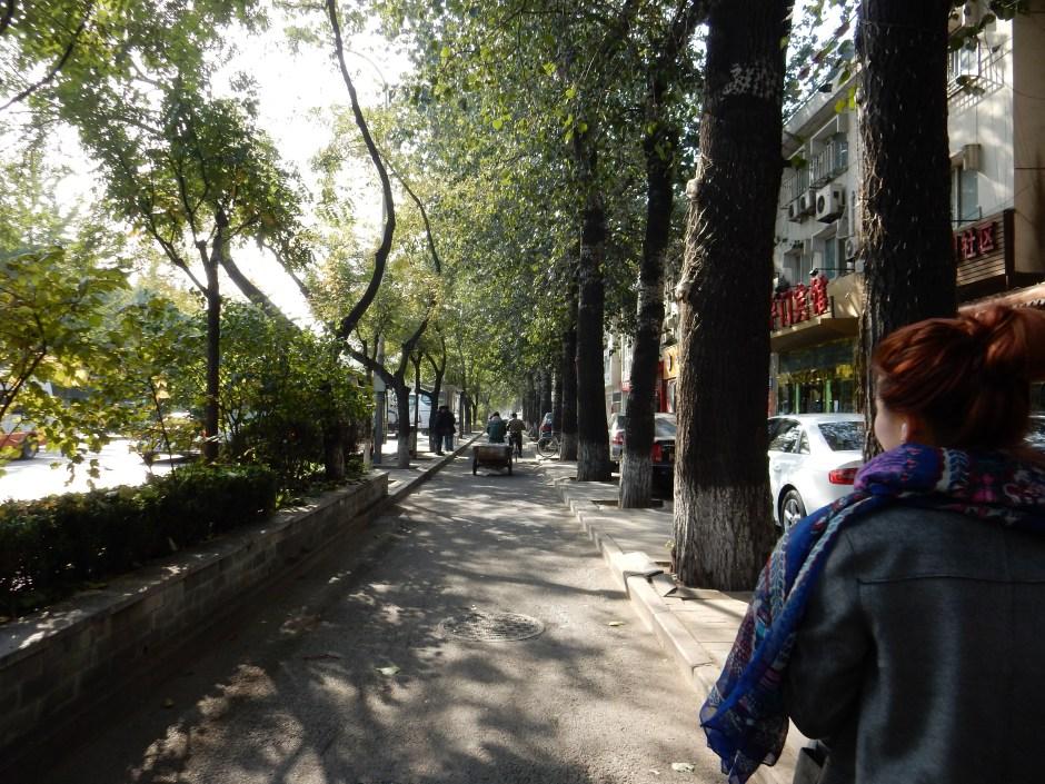 Beiheyan Dajie, Beijing, China